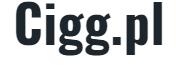 www.cigg.pl